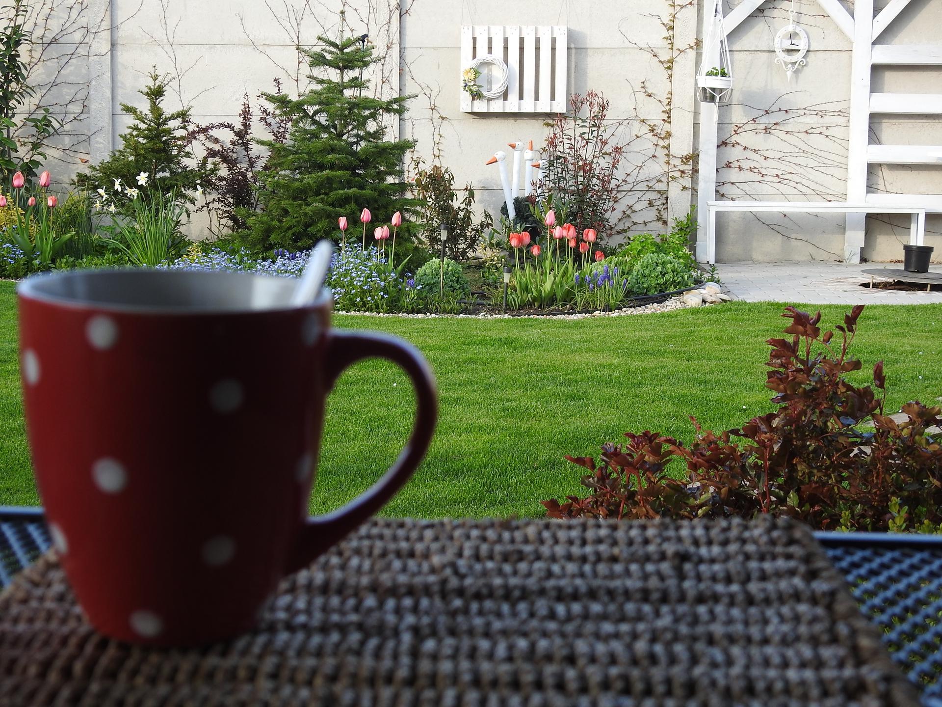 Máj v záhradke