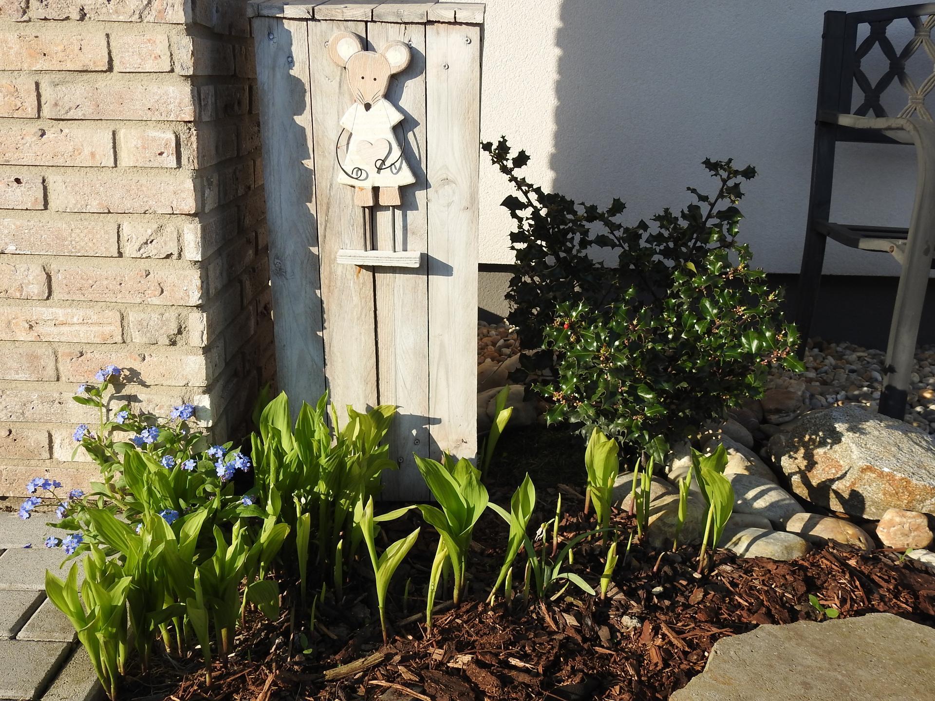 Máj v záhradke - Obrázok č. 40