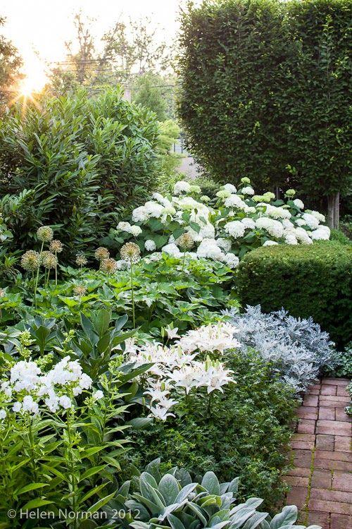 Inspiracie do mojej zahrady - Obrázok č. 2