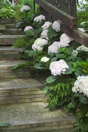 Inspiracie do mojej zahrady - Obrázok č. 3