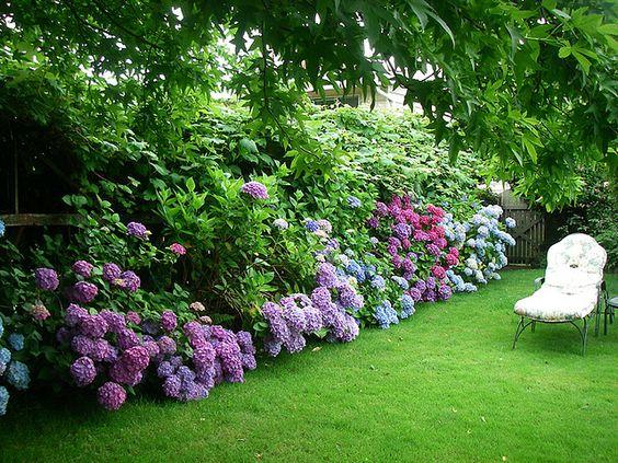 Inspiracie do mojej zahrady - Obrázok č. 9