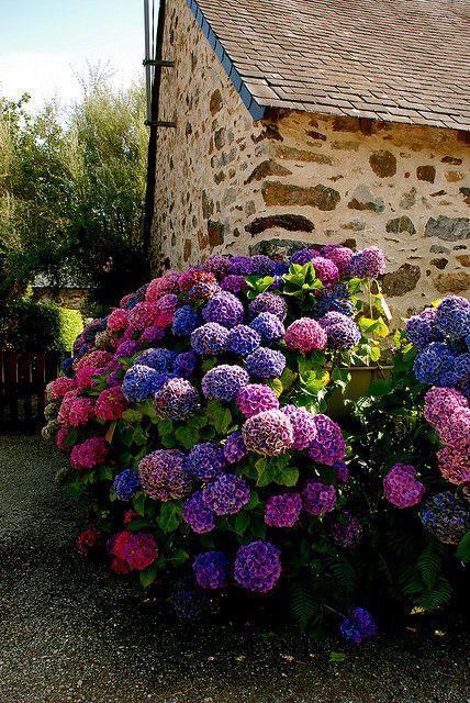 Inspiracie do mojej zahrady - Obrázok č. 25