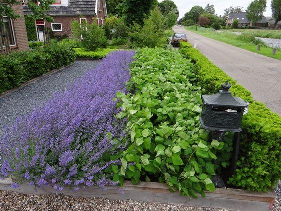 Inspiracie do mojej zahrady - Obrázok č. 35