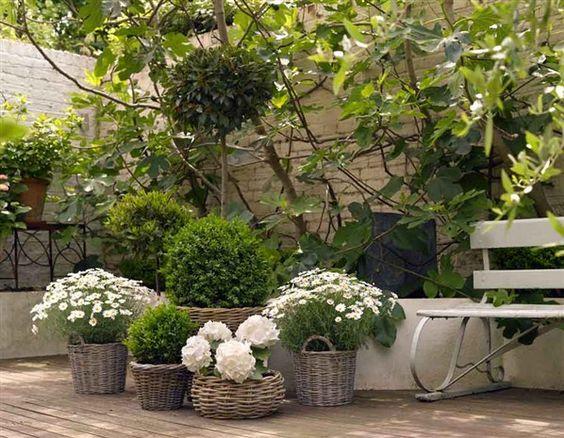 Inspiracie do mojej zahrady - Obrázok č. 40
