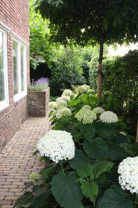 Inspiracie do mojej zahrady - Obrázok č. 65