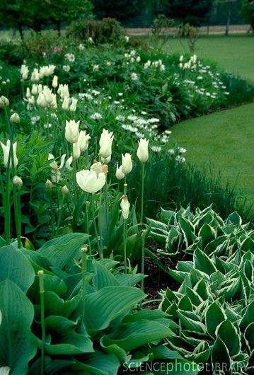 Inspiracie do mojej zahrady - Obrázok č. 71
