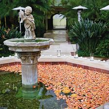 Lupene vo fontane...
