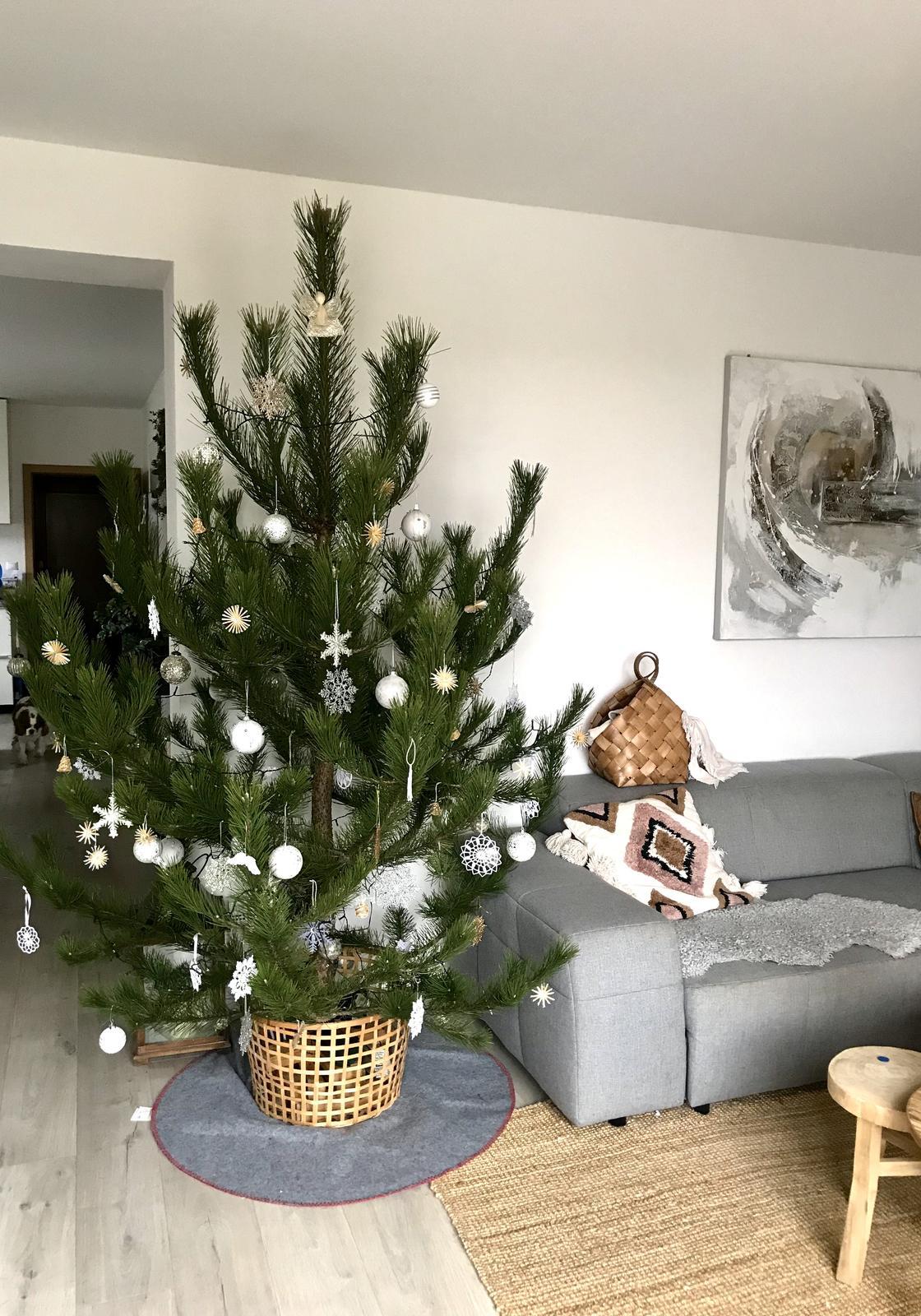 ❄️Naše Vánoce 2020❄️ - Obrázek č. 30