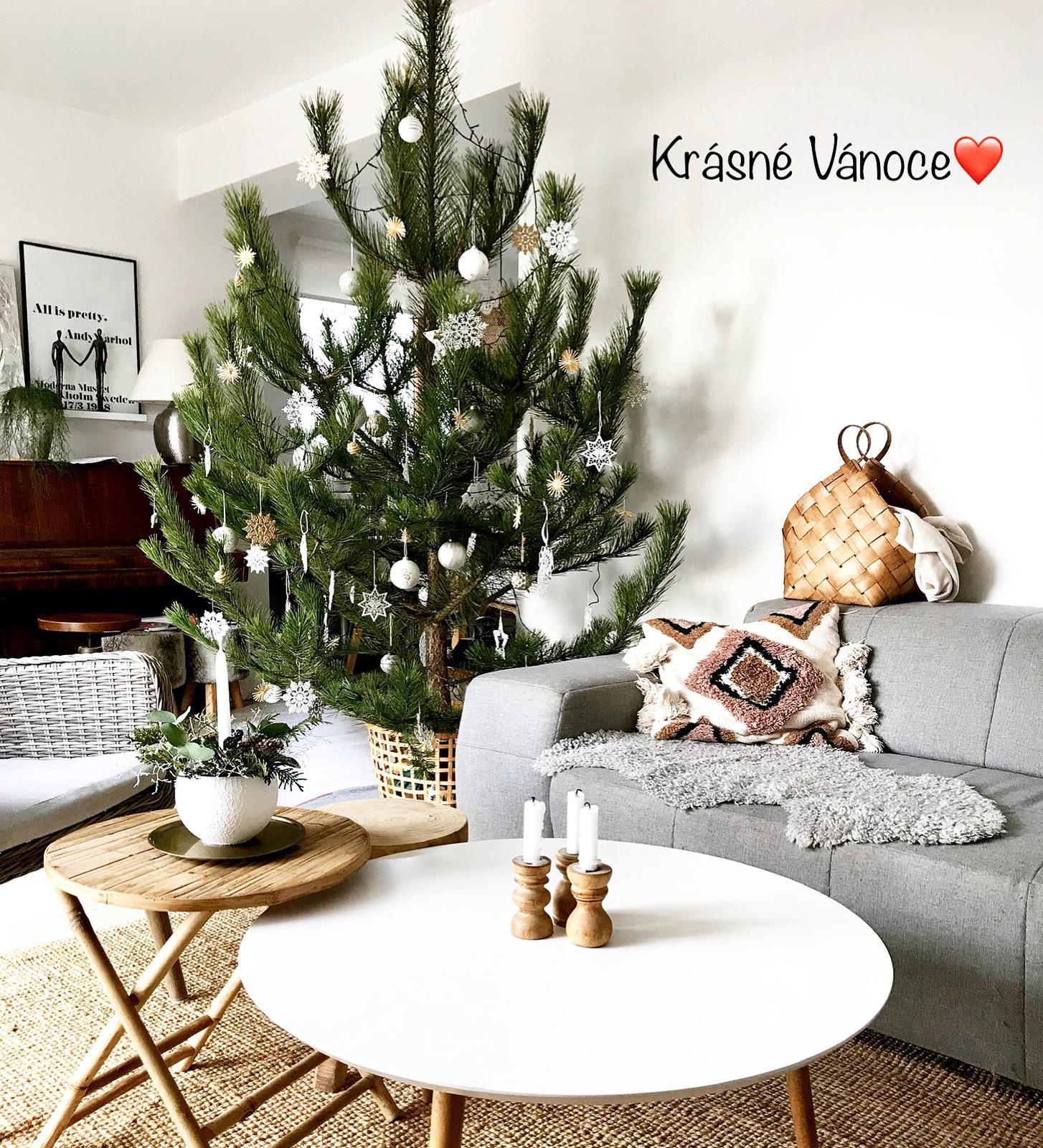 ❄️Naše Vánoce 2020❄️ - Obrázek č. 35