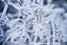 Winter Wedding - Obrázok č. 33