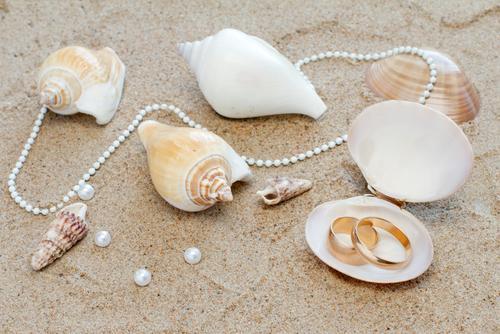 Wedding on the beach - Obrázok č. 71