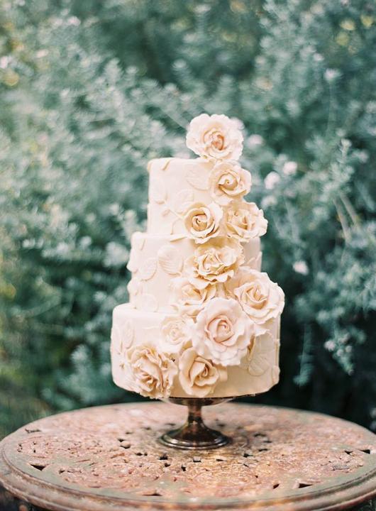 """Ruže v hlavnej úlohe @ } - , - """" - - Obrázok č. 228"""