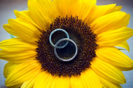 Sunflower wedding - Obrázok č. 11