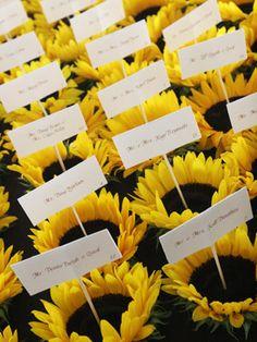 Sunflower wedding - Obrázok č. 12