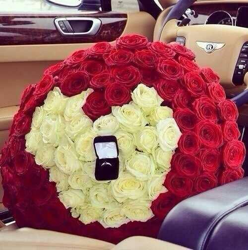 """Ruže v hlavnej úlohe @ } - , - """" - - Obrázok č. 235"""