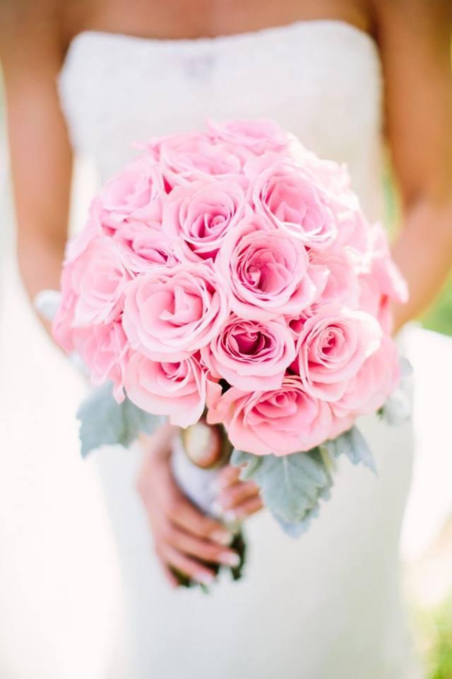 """Ruže v hlavnej úlohe @ } - , - """" - - Obrázok č. 243"""