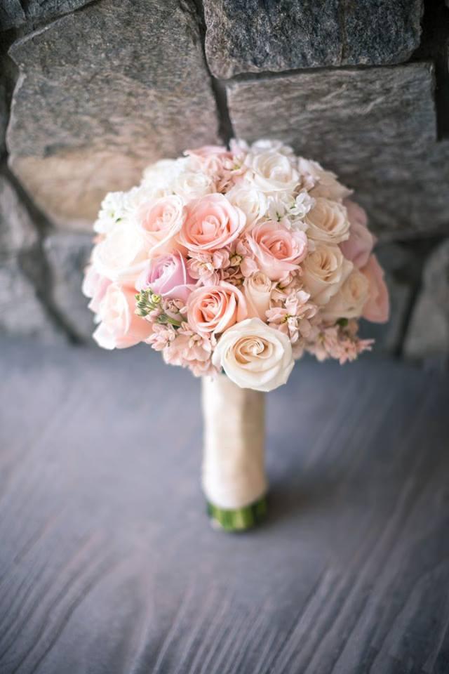 """Ruže v hlavnej úlohe @ } - , - """" - - Obrázok č. 244"""
