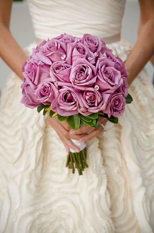 """Ruže v hlavnej úlohe @ } - , - """" - - Obrázok č. 246"""