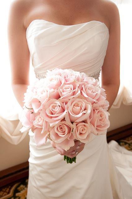 """Ruže v hlavnej úlohe @ } - , - """" - - Obrázok č. 247"""