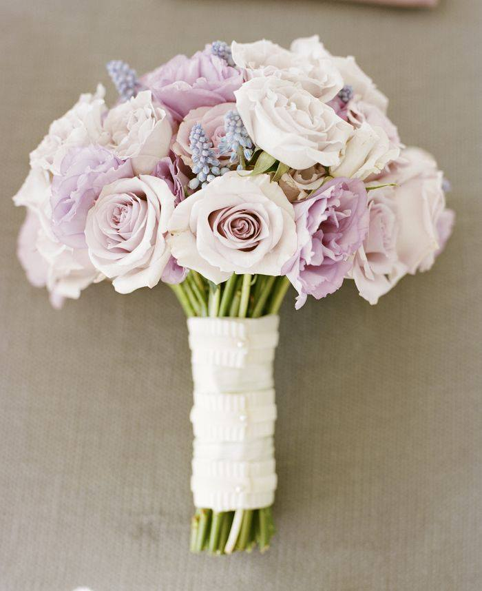 """Ruže v hlavnej úlohe @ } - , - """" - - Obrázok č. 249"""