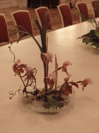 Kyticky a ine - nieco orchidejkove na stol