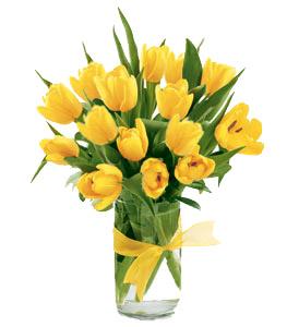 Svadobna kytica z tulipánov - Obrázok č. 32