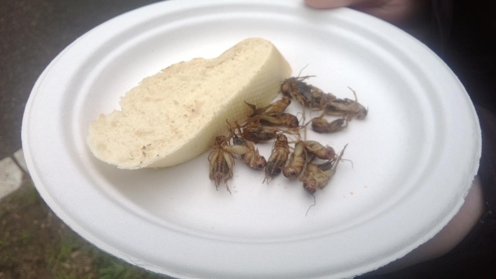 Hokus pokus v kuchyni - cvrčci na másle, nikdy bych neřekla, že tohle budu jíst a že mi to bude vážně chutnat :-)