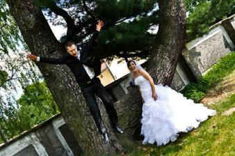 strom jak stvořený pro fotky :)