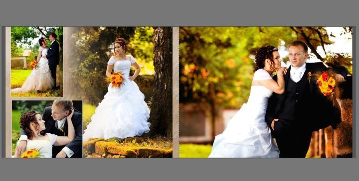 Svatební album - Obrázek č. 13