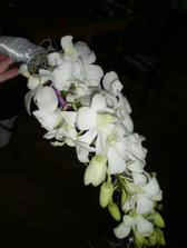 Dendrobium...bude v mojí kytici.Bud bílá nebo světle fialová.
