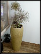 Nová váza a mé česneky.