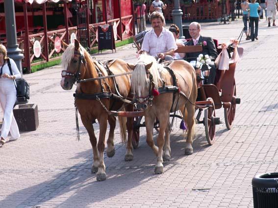 Marcela Václavková Konrádová{{_AND_}}Peter Václavek - prejaz kočom cez mesto