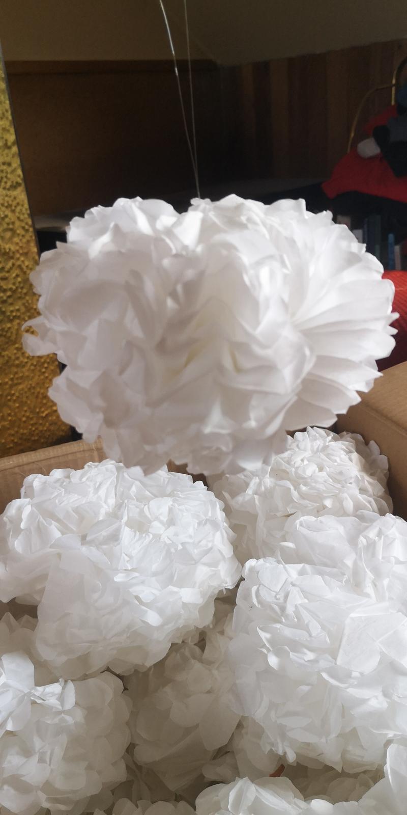Bílé pompomy - Obrázek č. 1
