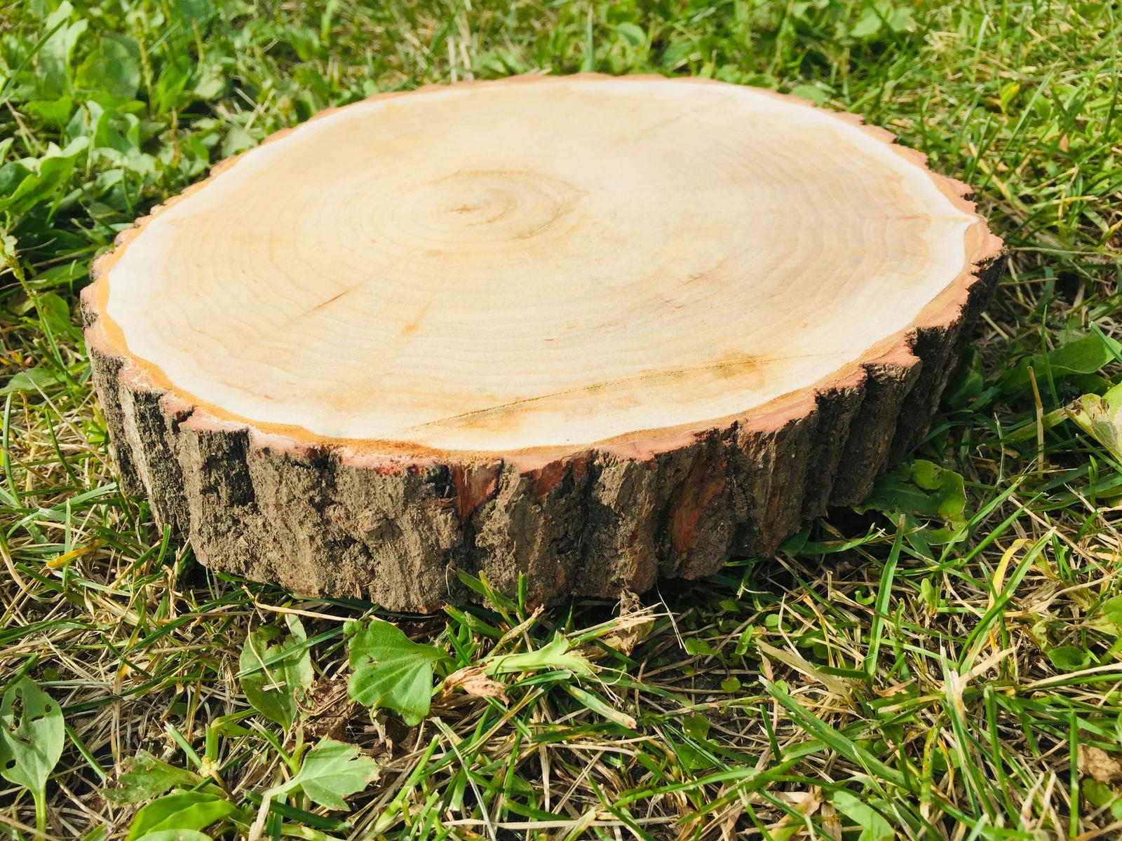 dřevěné koláče - Obrázek č. 2