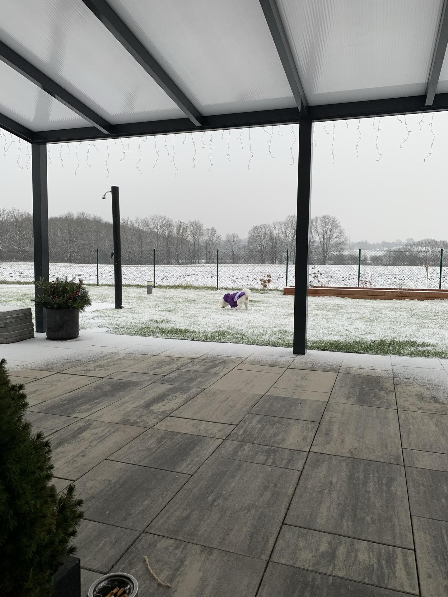 Ať je sníh i na vánoce :-) - Obrázek č. 3