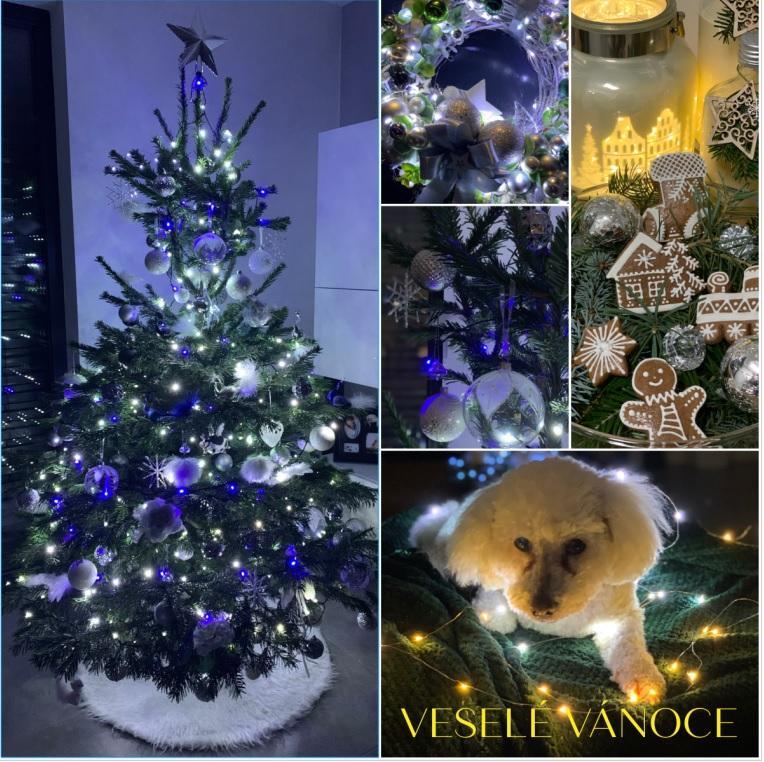 🎄🎄🎄Přejeme Vám všem krásné Vánoce, hodně štěstí, zdraví, pohody, radosti a lásky🎄🎄🎄 - Obrázek č. 1