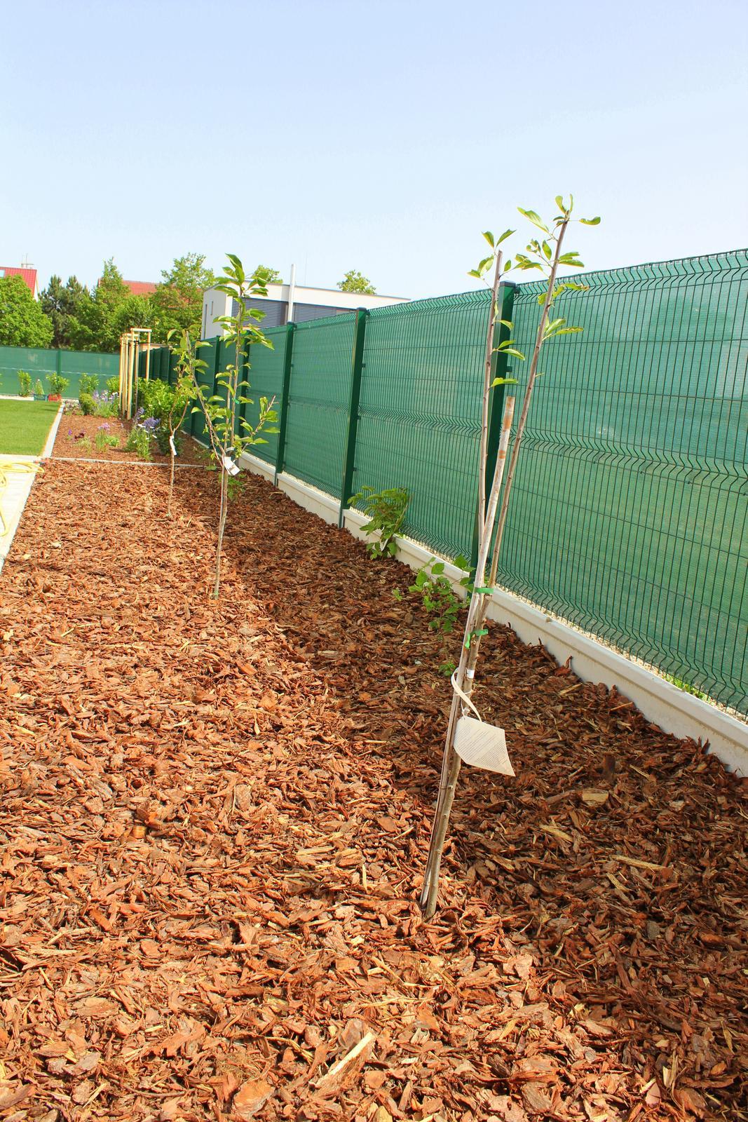 Exterier - po boku domu su 4 ovocne stromy a maliny a cernice (nas ovocny kutik)