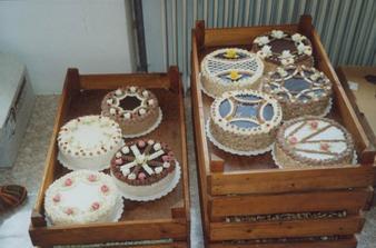 naše dortíky...vypadli překrásně, ale bylo jich moc..