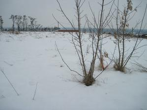 nas pozemek v zime, neni nic videt