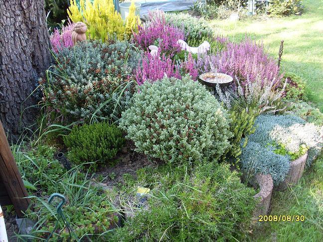 Život na záhrade - Obrázok č. 25