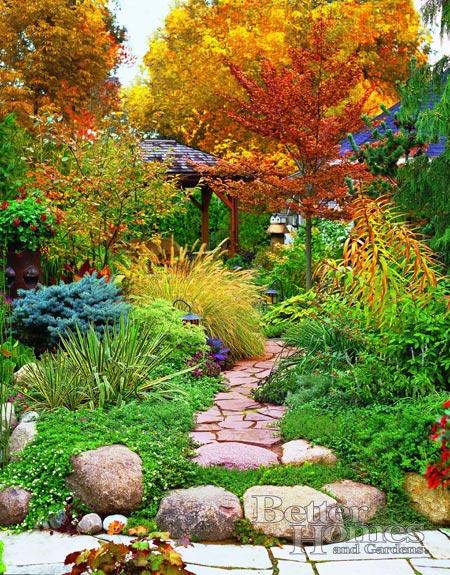 Život na záhrade - Obrázok č. 61