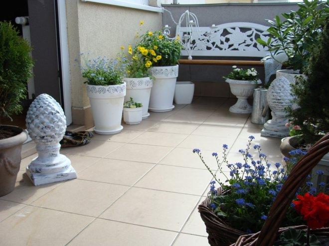 Život na záhrade - Obrázok č. 67