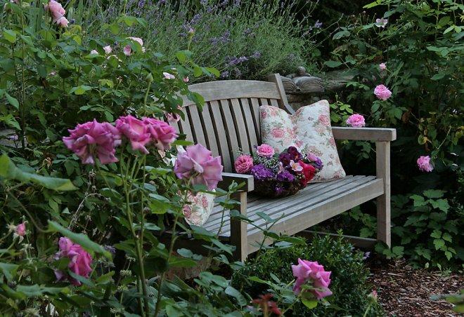 Život na záhrade - Obrázok č. 80