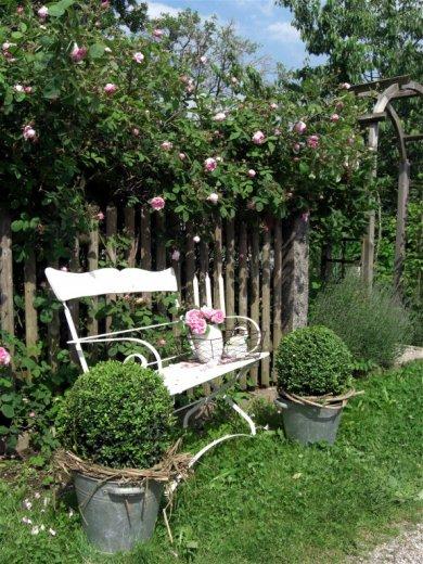 Život na záhrade - Obrázok č. 81