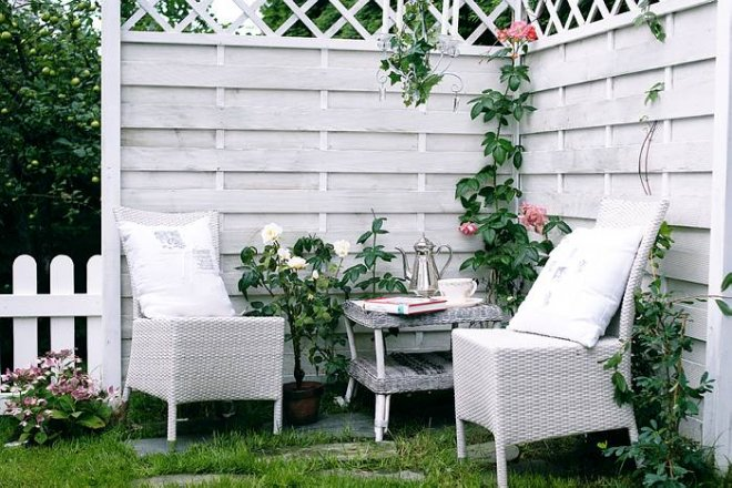 Život na záhrade - Obrázok č. 99