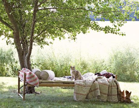 Život na záhrade - Obrázok č. 91