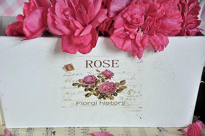 Ružový album - Obrázok č. 48