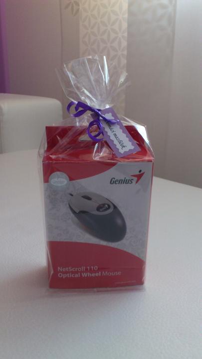 Svatební tombola - Domácí mazlíček - PC myš:-)