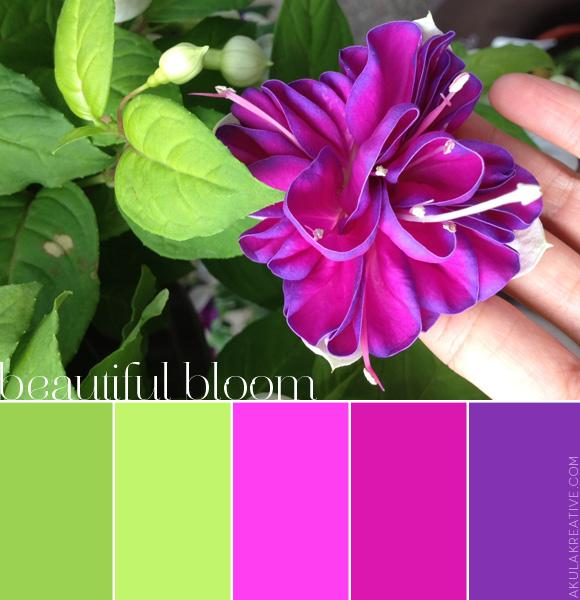 Paleta farieb - Obrázok č. 73
