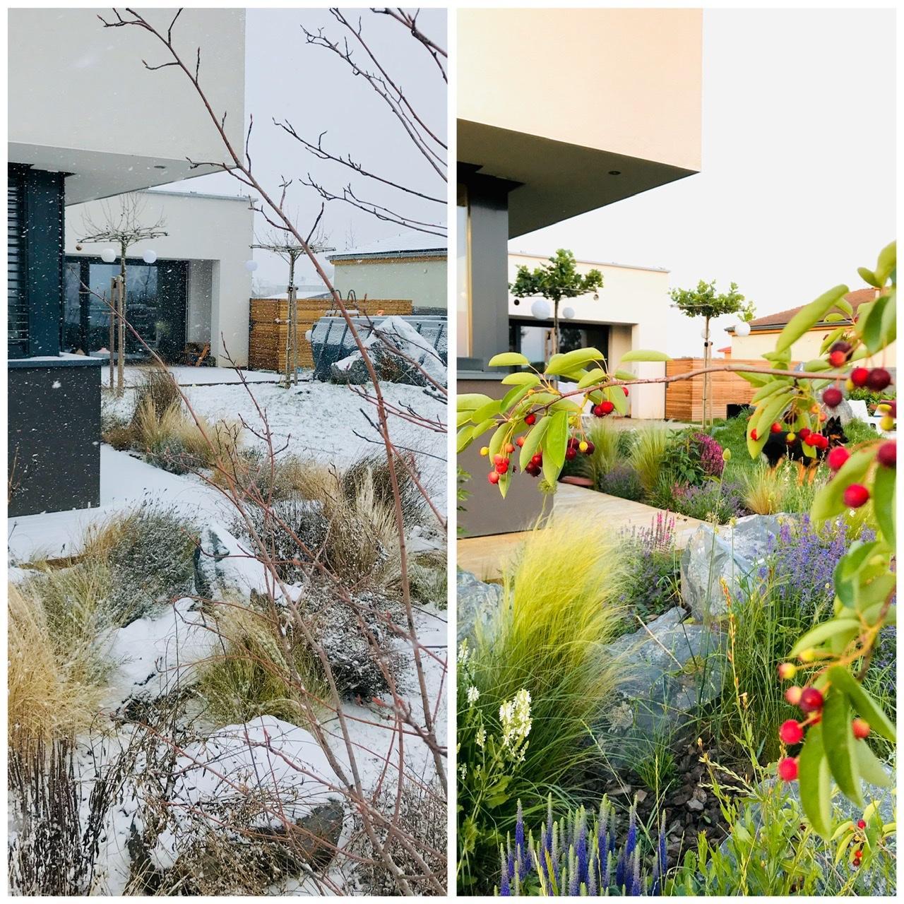 Naše L-ko - 2021 - stále dokončujeme - Trvalkový záhon ZIMA - LETO (január - jún)  Včerajšie foto ked znovu pocukrovalo záhradu snehom